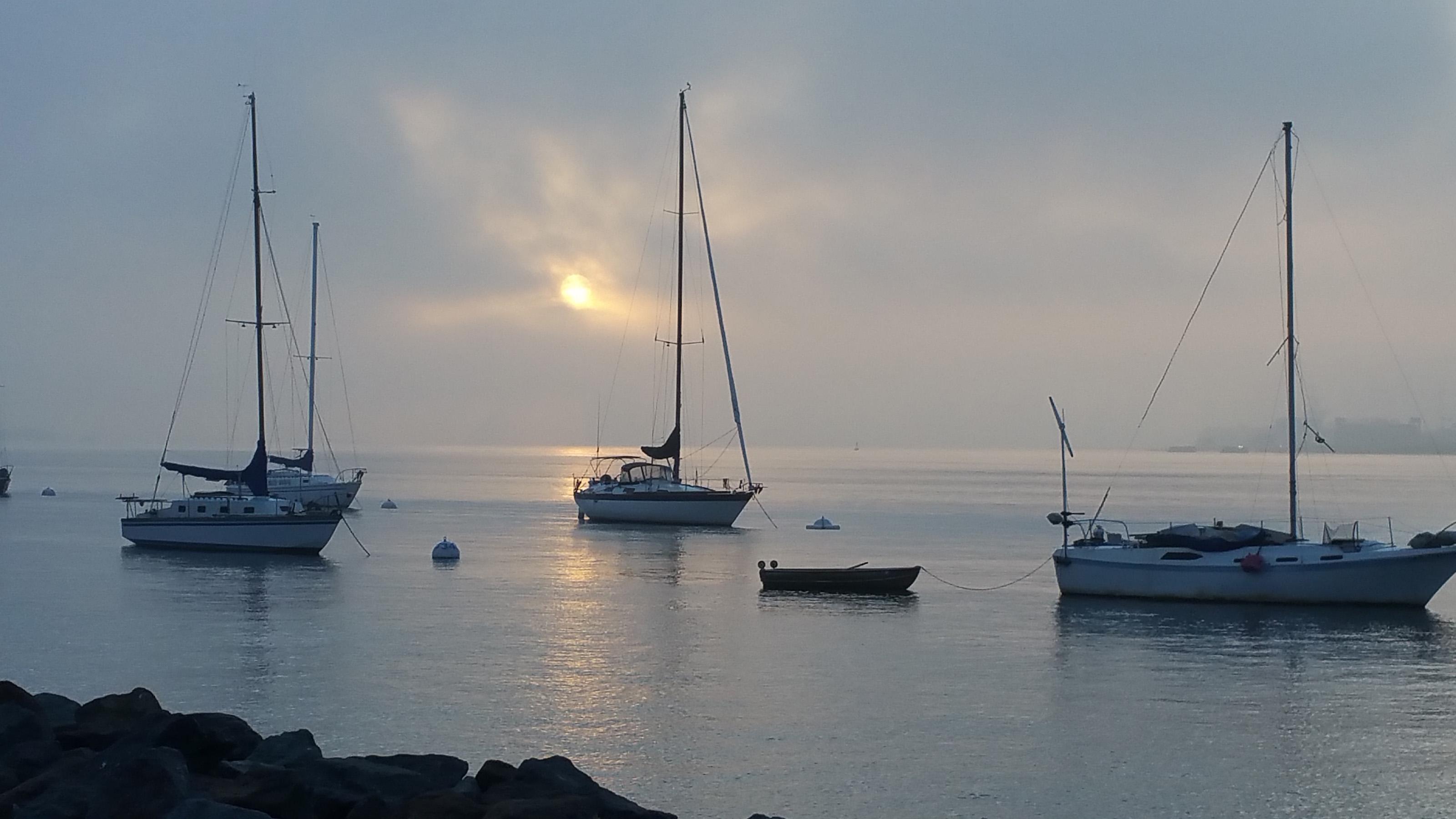 Three sail boats in San Diego Bay